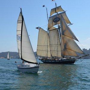 San Diego Bay sail