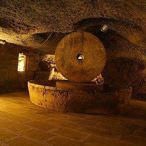 Il territorio del comune di Presicce è, nel Salento, quello con il maggior numero di trappeti a