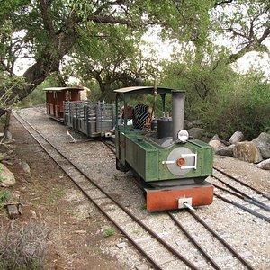 Piedra Baya Ferrocarril de Montana