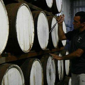 Barrels at Talijancich Wines