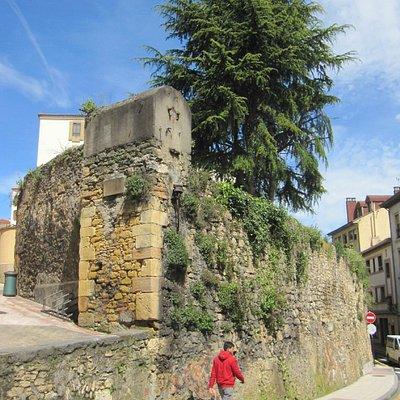 Vista de una parte de la muralla.