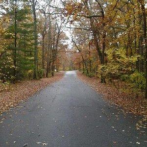 Fall beauty at Martinak state park Maryland.