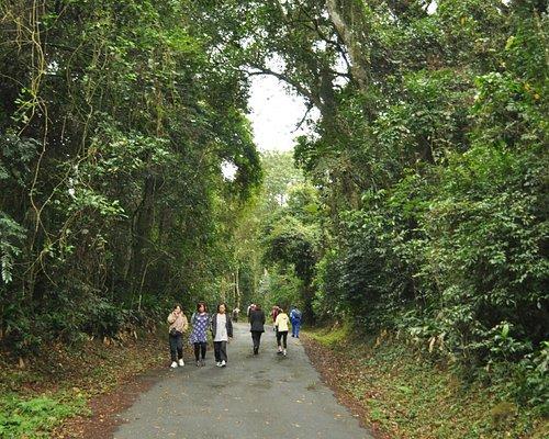 Parque Estadual da Serra da Cantareira