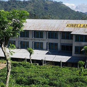 Kinellan Tea Factory