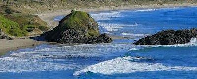Tawharanui coast