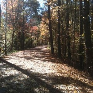 an autumn day on the trail