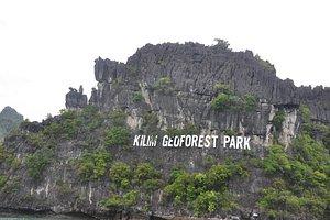 Kilim Geo Forest