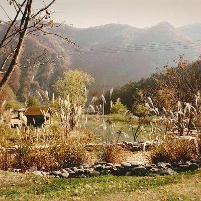 짚와이어 타고내려오면 이렇게 이쁜 산책할수있는 호수가있어요. 가을 단풍관 억새풀이 매력적입니다.