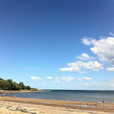 Rosemarkie Beach - late July 2013