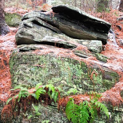 Spruce Bog Trail Rock Formations