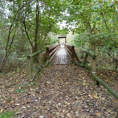 Uno dei sentieri del parco