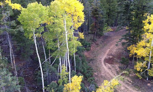 From the Chair Lift in September