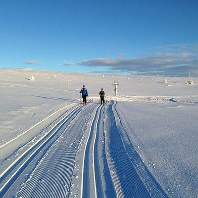 Skiing at Venabygdsfjellet