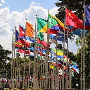 UN Flags @ Nairobi
