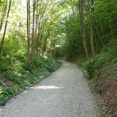 Between Stavelot and Francorchamps
