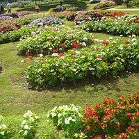สวนแม่ฟ้าหลวง พระตำหนักดอยตุง