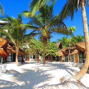 Shambala Petit Beach Hotel & Yoga Retreat View From The Beach !!