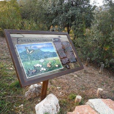 Jardin Micologico La Trufa