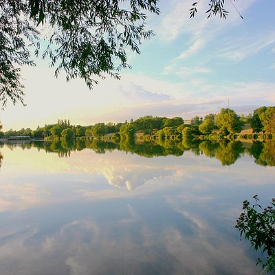 Summers evening at Stanborough Lakes