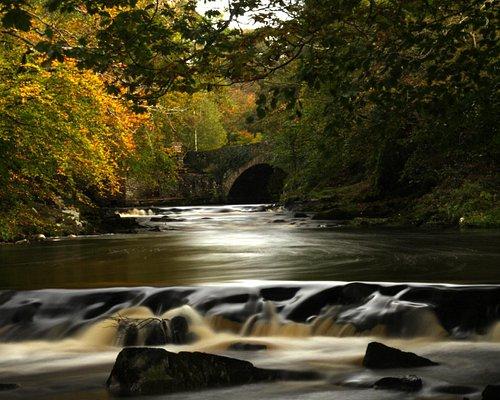 Crana River Autumn Flow