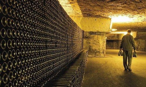 Les plus grandes caves de Bourgogne !