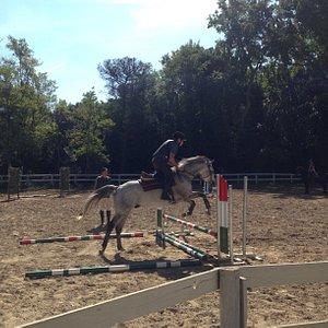 Campo di salto ostacoli