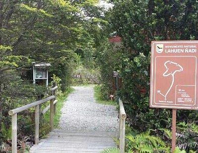 Parque lahuen ñadi