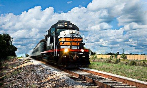 Austin Steam Train