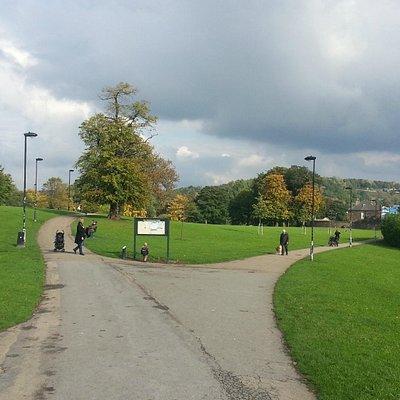 fantastic green park