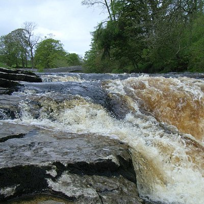 Stainforth Force, Packhorse/Dog Hill Brow Bridge just visible: May 2012