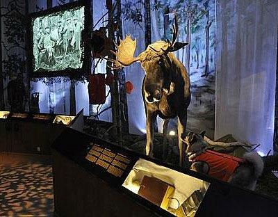 The new permanent exhibtion. Photo: Ilja Koivisto/The Hunting Museum of Finland