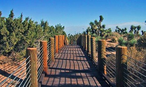 Prime Desert Woodland Preserve - Lancaster, CA