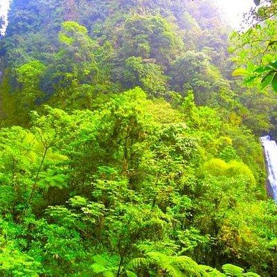 male waterfall on left...