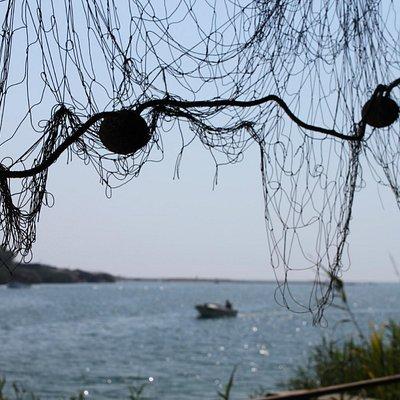 дельта реки с адриатическим морем