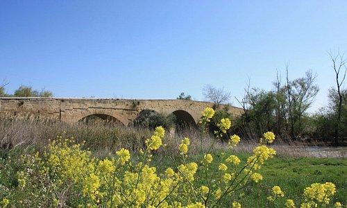 Ponte Romano sul Fiume Ofanto (I Sec. D.C.)