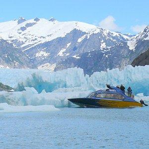 Alaska Charters & Adventures at LeConte Glacier