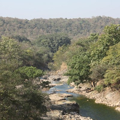 Stream beyond the dam flowing into the Gir Forest