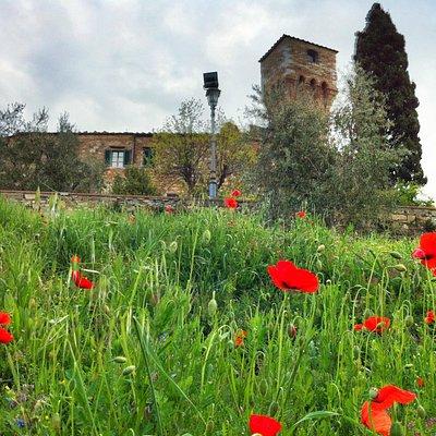 San Donato's watch tower