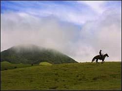 Open range riding ont he Big Island of Hawaii