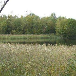 Cromwell Bottom lagoon