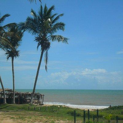 Vista na chegada da Praia do coqueiral