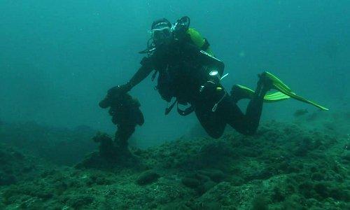 inmersiones para todos los niveles cursos padi