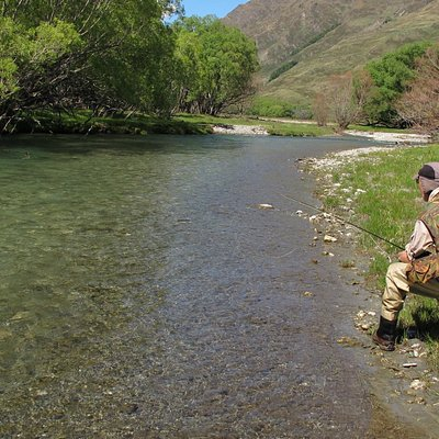 Trout Bohemia fly fishing, the best of New Zealand trout 5