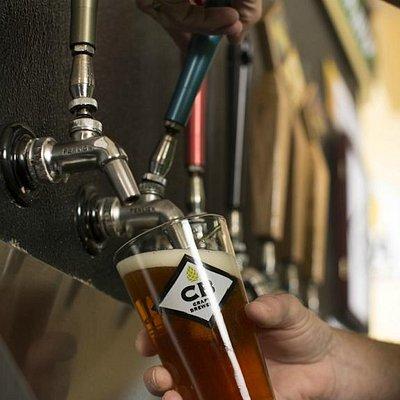 Always 23 craft beers on tap