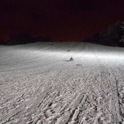 View of sledding hill from the bottom
