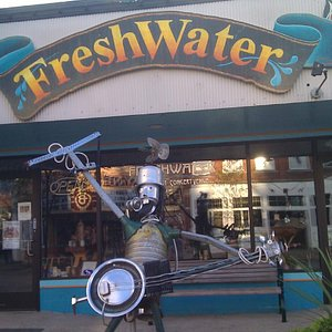 The tin man welcomes you to Freshwater