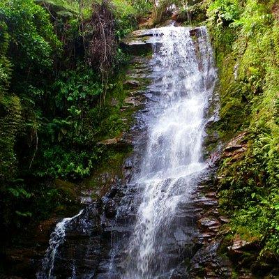 Cachoeira Antares STL