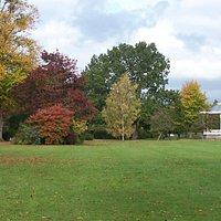 Vivary Park in Autumn
