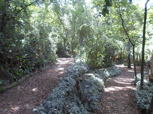 Parque Alfredo Volpi