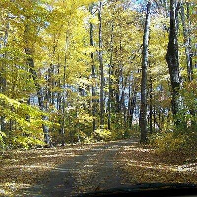 The road leading into Creek Ridge Park.